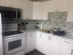 Completely Renovated Four Bedroom Home  Available August 1