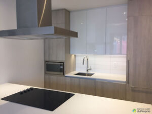 New 2 Bed Luxury Condo In the Heart of Downtown
