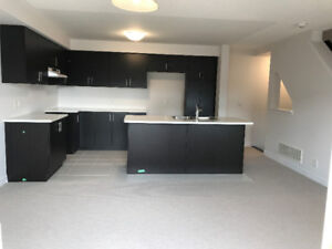 Beautiful Brand New Townhouse for Rent