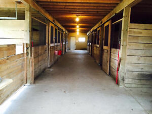 6-8 Stalls/Barn for Rent with Attached Indoor Riding Arena