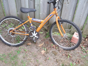 boys bikes Kitchener / Waterloo Kitchener Area image 1