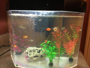 30 gallon fish tank with stand St. John's Newfoundland image 2