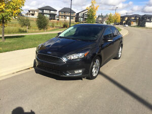 2015 Ford Focus SE Sedan 18500 km