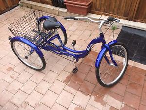 Shwinn three wheel bike