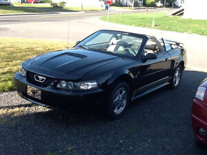 2002 Ford Mustang LX Cabriolet
