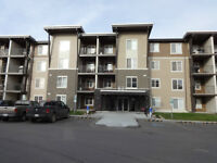 New Modern 2 Bed and 1 Bath Condo in Walker Lake-PRICE REDUCED