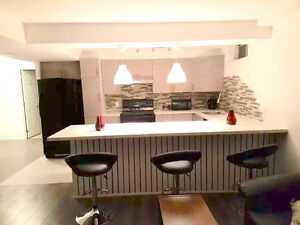 Fully Upgraded 2bedroom for rent in Hamilton/Mountain (All Inclu