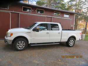 EXCEPTIONAL LOW KMS FORD F150 PICK UP