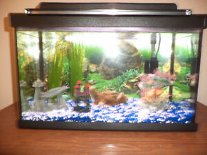 10 Gal Fish Tank with Accessories