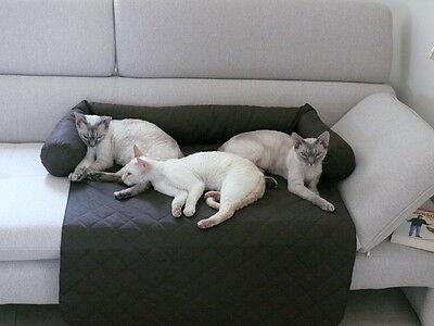 Coperta per divano Cuccia Letto Cuscino per cani e gatti L 90 x 70 cm