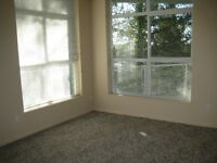super clean/nice/safe place in Maple Ridge one bedroom $800
