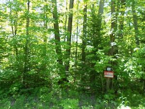 Land for Sale Gatineau Ottawa / Gatineau Area image 3