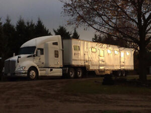 15 Horse Trailers For Sale