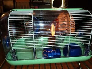 Cage souris - hamster