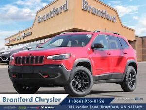 2019 Jeep Cherokee Trailhawk Elite 4x4  - Navigation