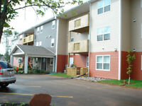 New 2Bdrm Senior Friendly, Professional Adult with Elevator