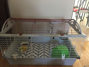 Guinea pig cage with all the accessories