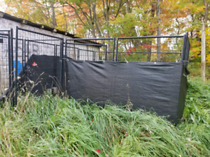 ,Two 8' x 8' dog kennels
