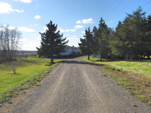 Hobby farm potential / Income property / Motivated seller!