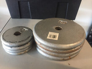 50 LBS Weight Lifting Plates for sale
