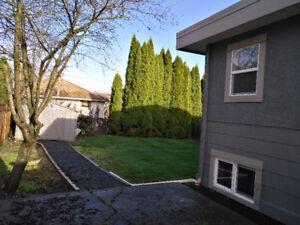 $1100-2bdrm newly renovated suite for rental (Chilliwack)