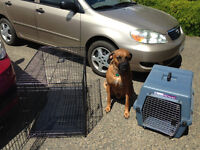 Metal Dog Crate and Plastic Carrier