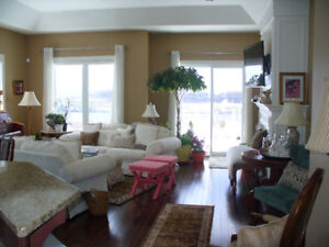 One Hour Decorating Consultation