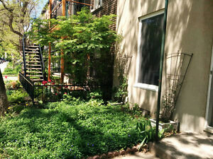 Awesome condo 4 1/2 in Plateau's heart - Jan-Jul 2017 for rent