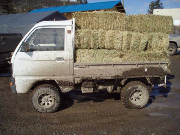 Used 1999 Suzuki Carry EFI