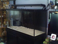 90 gallon saltwater tank