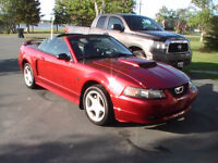 REDUCED ! 2003 Ford Mustang GT Convertible v8