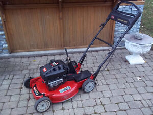 Toro Buy Or Sell A Lawnmower Or Leaf Blower In Ontario