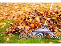 Police Foundations Graduate doing fall and leaf clean ups