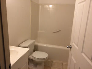 2 bedroom renovated apartment available immediately