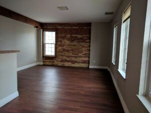BEAUTIFULLY RENO'D 1 BDRM CONDO IN NEW GAS LIGHT DISTRICT!