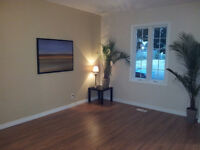 NEW PRICE-NEWLY RENOVATED BEAUTIFUL HOME