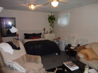 Dufferin/Steeles basement apartment