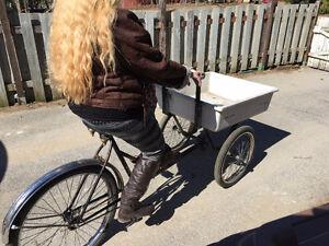 tricycle avec panier avant / idéal pour dépanneur,,,,,,