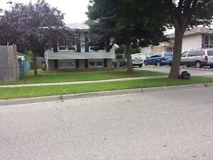 Hardscraping and landscaping/lawncare London Ontario image 9