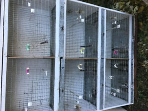6 breeding cages for sale