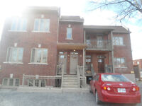 COMPLETELY RENOVATED LOWER DUPLEX -