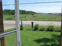 Best house deal on this site in Cocagne area. Check this out.