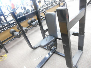Commercial Gym Equipment Windsor Region Ontario image 3