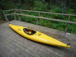 Stylish & Comfortable Perception Kayak