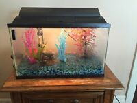 Fish Tank 20 gallon