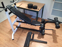 Northern Light Bench/Squat/abdominal Rack + Weight Set + Bar