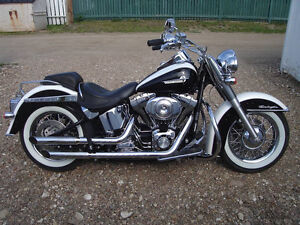 """NOT THE EVERY DAY SOFTAIL DELUXE"""