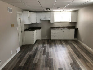 Newly Renovated 1 Bdrm Suite in King Edward Park - Utilities Inc