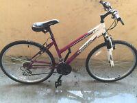 TERRAIN women Bike