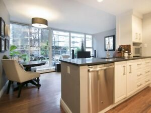 FURNISHED 1-BEDROOM DOWNTOWN / YALETOWN CONDO -1008 Cambie Stree